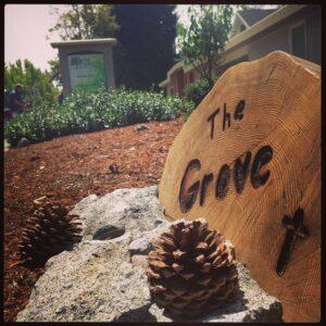 The Grove Christian Church